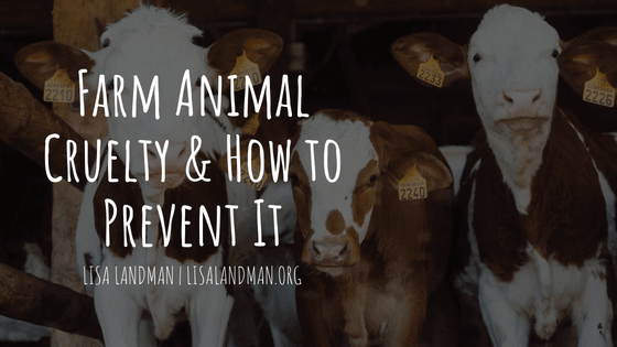Farm-Animal-Cruelty-How-to-Prevent-It-Lisa-Landman